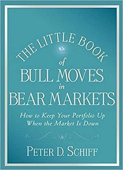 The Little Book of Bull Moves in Bear Markets PDF